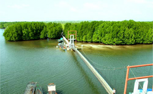 _koh_kong_mangrove_forest2.png